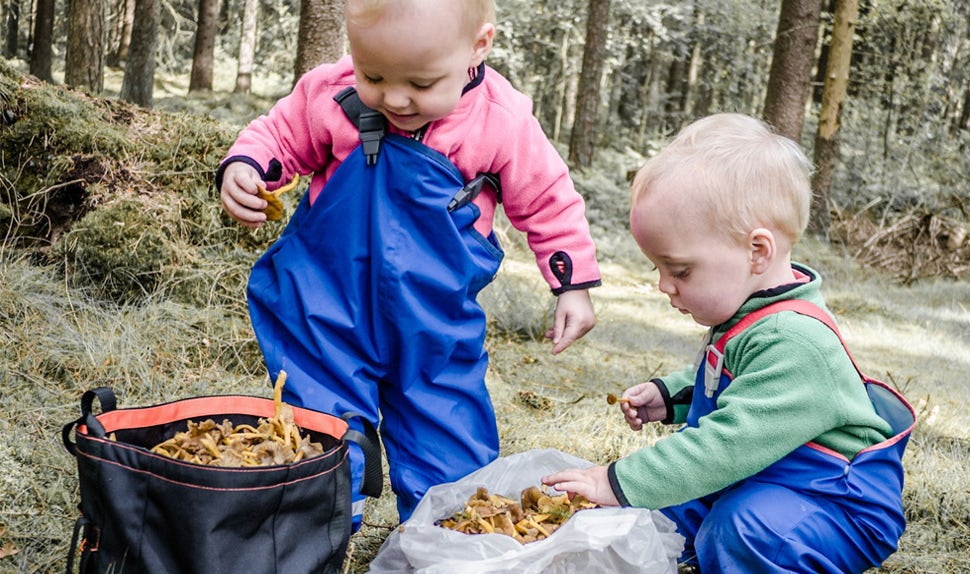 BABYBJÖRN Magazine – Inspiration for what kids can do on a forest trip from 0-6 years.